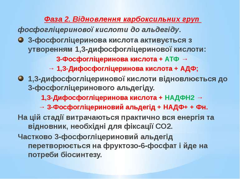 Фаза 2. Відновлення карбоксильних груп фосфогліцеринової кислоти до альдегіду...