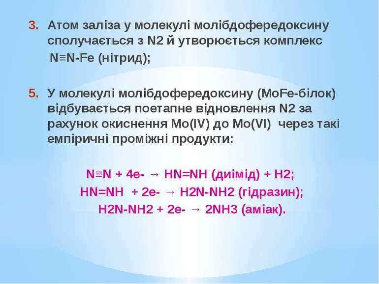 Атом заліза у молекулі молібдофередоксину сполучається з N2 й утворюється ком...