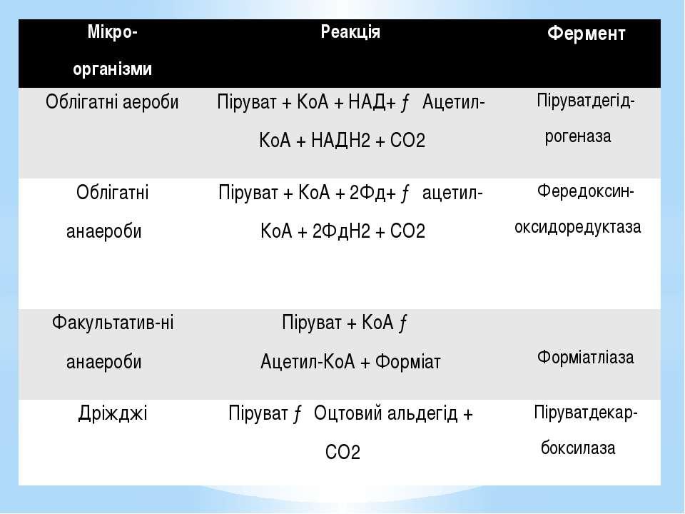 Мікро- організми Реакція Фермент Облігатніаероби Піруват+КоА+НАД+→Ацетил-КоА+...