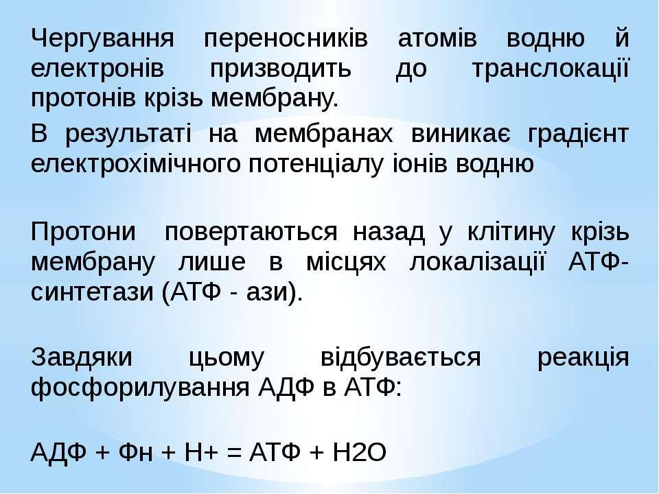 Чергування переносників атомів водню й електронів призводить до транслокації ...