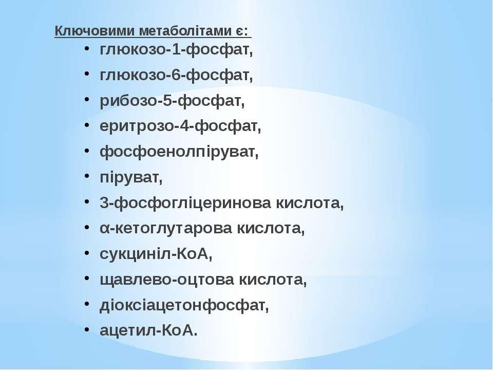 Ключовими метаболітами є: глюкозо-1-фосфат, глюкозо-6-фосфат, рибозо-5-фосфат...