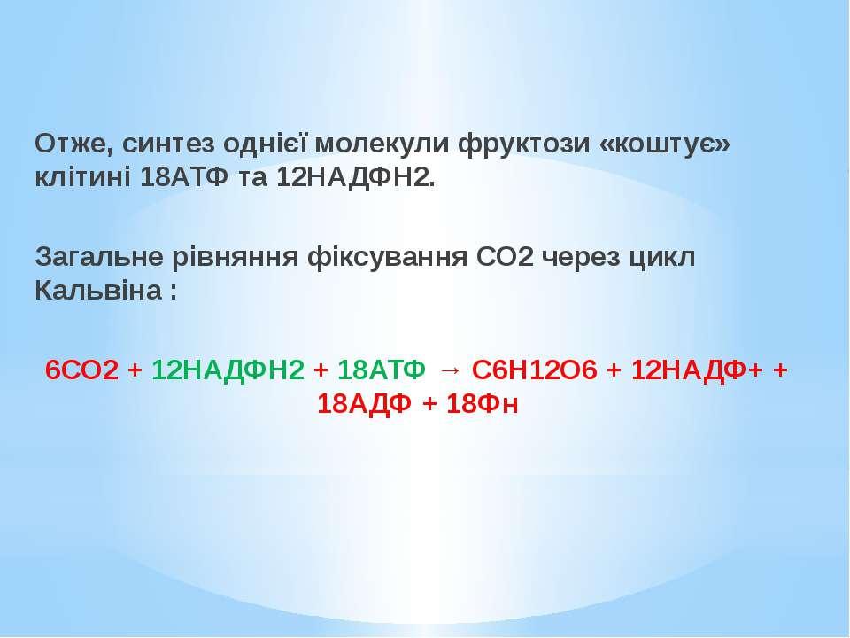 Отже, синтез однієї молекули фруктози «коштує» клітині 18АТФ та 12НАДФН2. Заг...