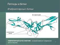 * Пептиды и белки Фибриллярные белки ФИБРИЛЛЯРНЫЙ БЕЛОК ФИБРОИН – основной ко...