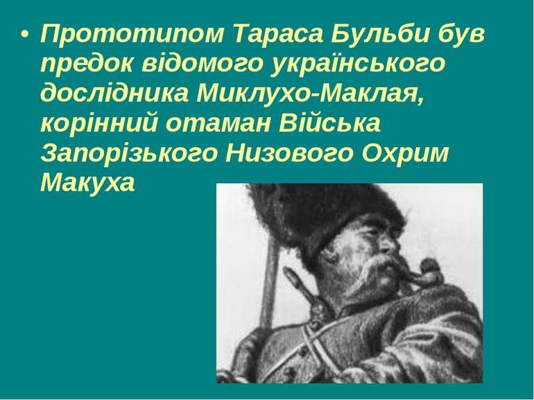 Прототипом Тараса Бульби був предок відомого українського дослідника Миклухо-...