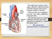 The right heart consists of an upper chamber called an atrium (with the auric...