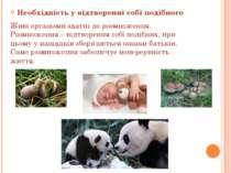 Необхідність у відтворенні собі подібного Живі організми здатні до розмноженн...