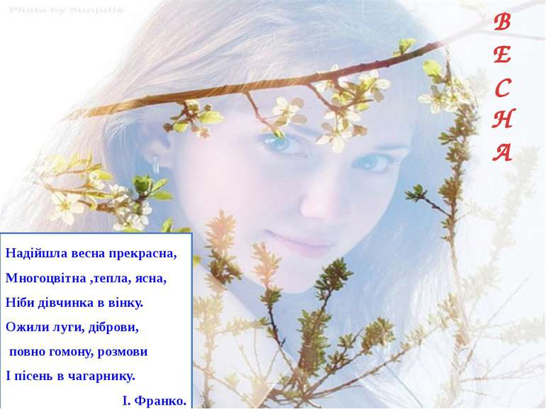 В Е С Н А Надійшла весна прекрасна, Многоцвітна ,тепла, ясна, Ніби дівчинка в...