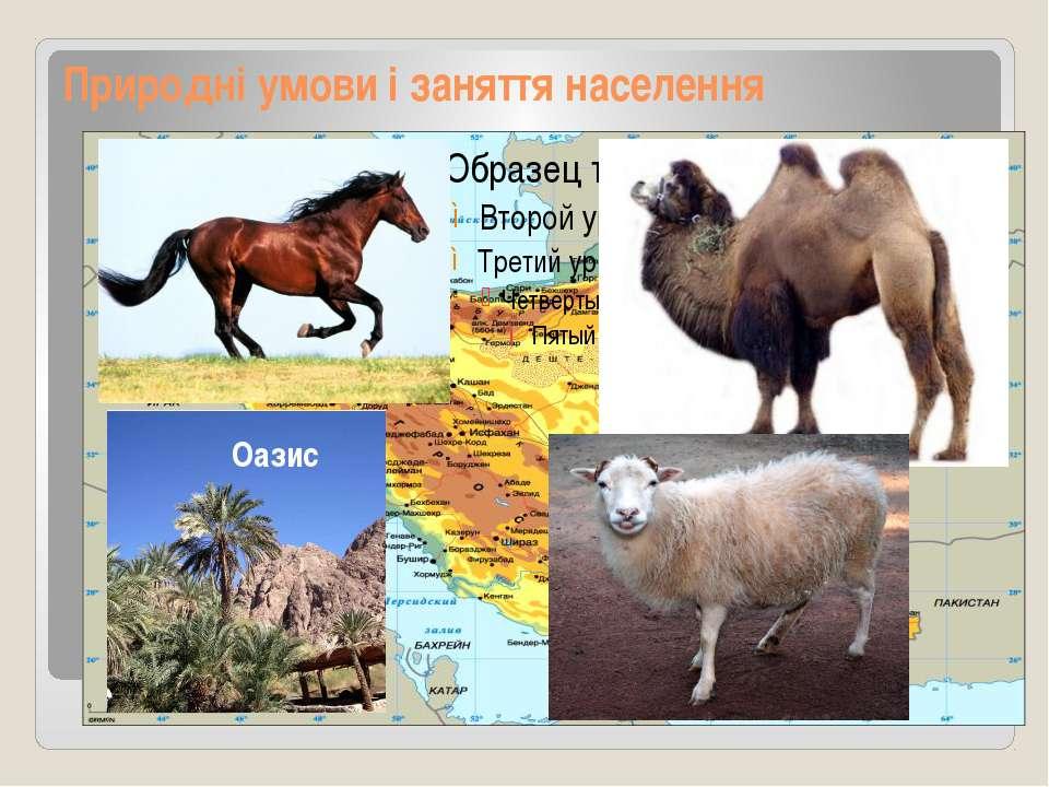 Природні умови і заняття населення Оазис