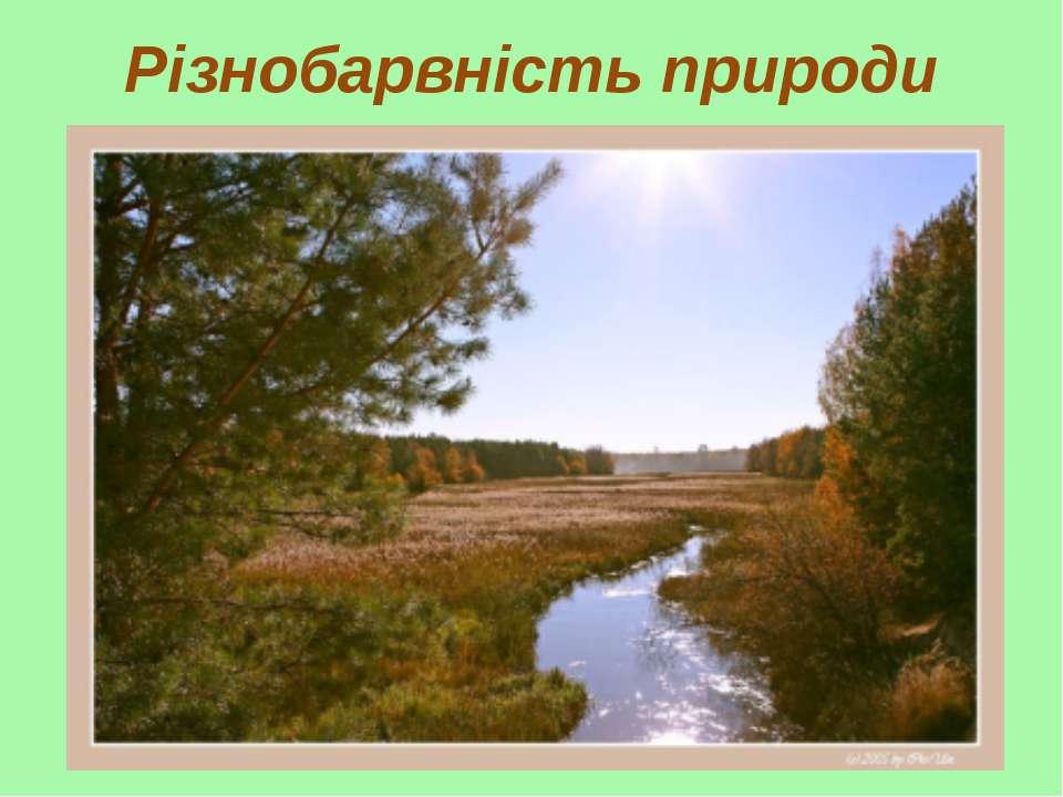 Різнобарвність природи