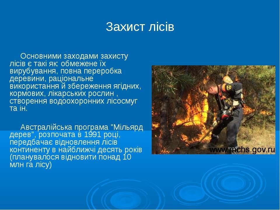 Захист лісів Основними заходами захисту лісів є такі як: обмежене їх вирубува...