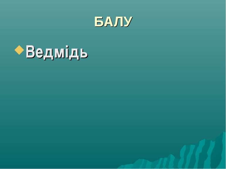 БАЛУ Ведмідь