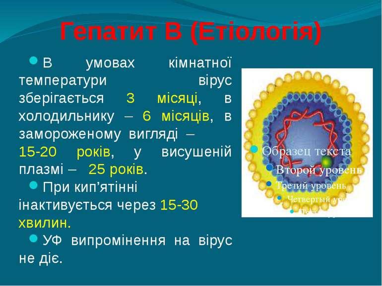 Гепатит В (Етіологія) В умовах кімнатної температури вірус зберігається 3 міс...