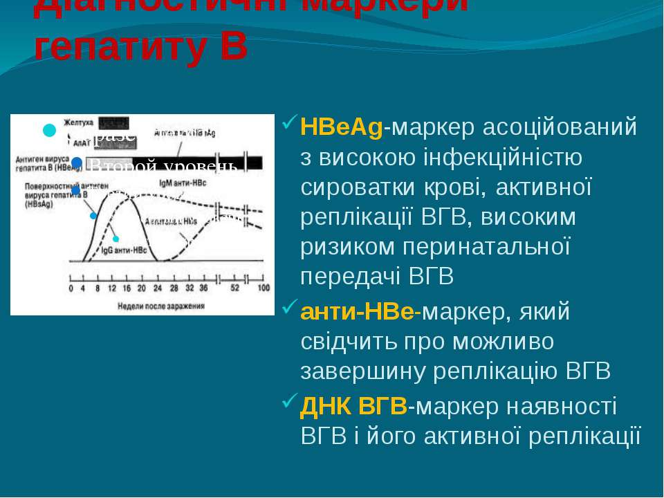 Діагностичні маркери гепатиту В HBeAg-маркер асоційований з високою інфекційн...
