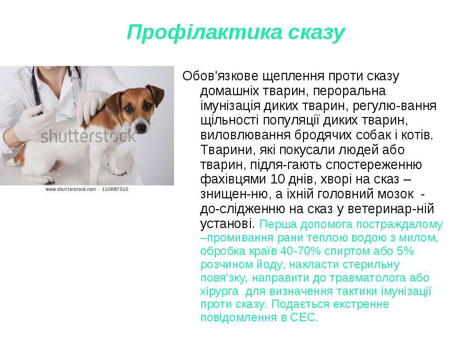 Профілактика сказу Обов'язкове щеплення проти сказу домашніх тварин, перораль...
