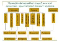 Класифікація інфекційних хвороб на основі екологічної і філогенетичної близко...
