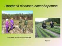 Професії лісового господарства Лісники Робітники лісового господарства