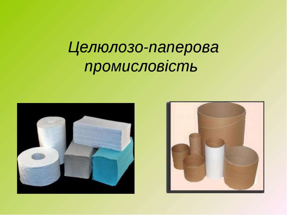 Целюлозо-паперова промисловість