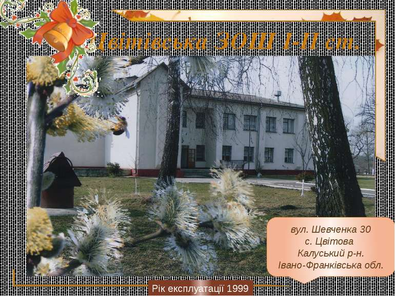 Цвітівська ЗОШ І-ІІ ст. Рік експлуатації 1999 вул. Шевченка 30 с. Цвітова Кал...