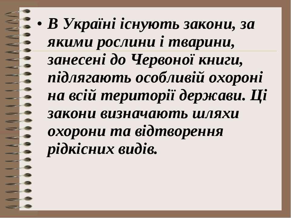 В Україні існують закони, за якими рослини і тварини, занесені до Червоної кн...