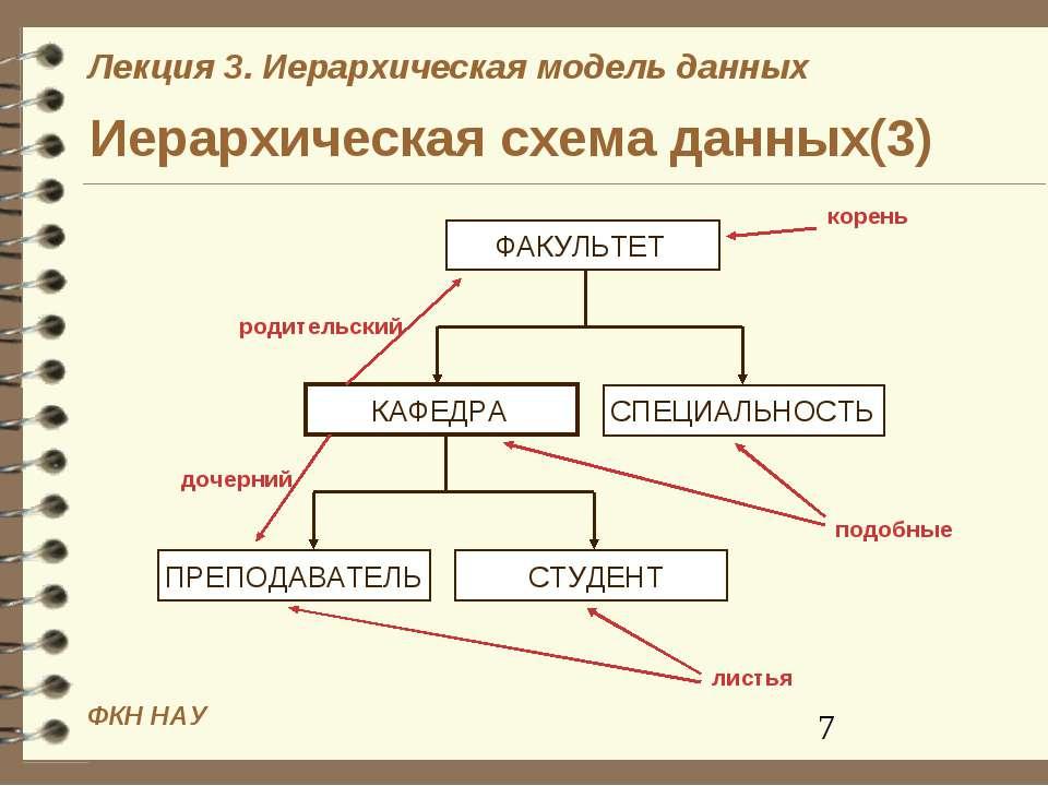 Иерархическая схема данных(3) ФКН НАУ Лекция 3. Иерархическая модель данных