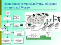 Принципові схеми видобутку, збирання та утилізації біогазу