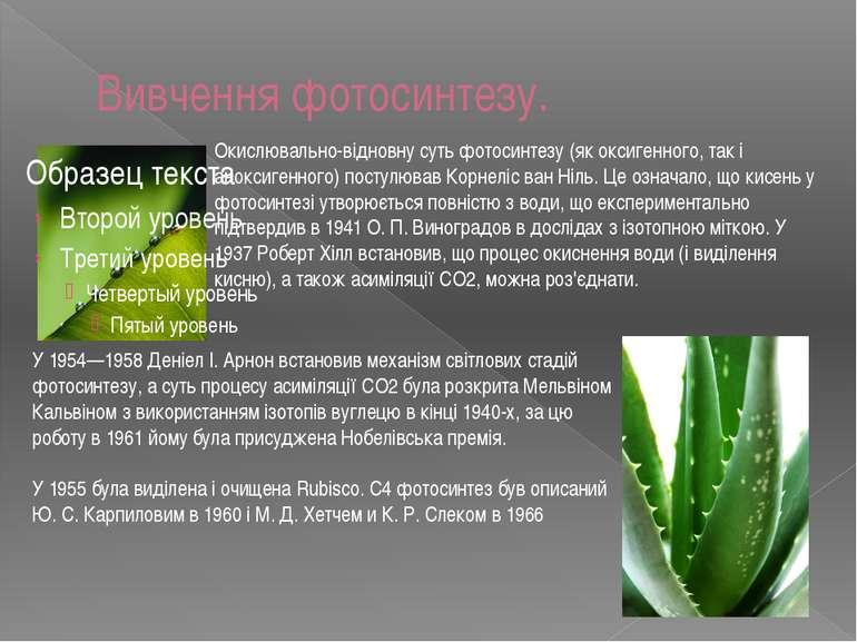 Вивчення фотосинтезу. Окислювально-відновну суть фотосинтезу (як оксигенного,...