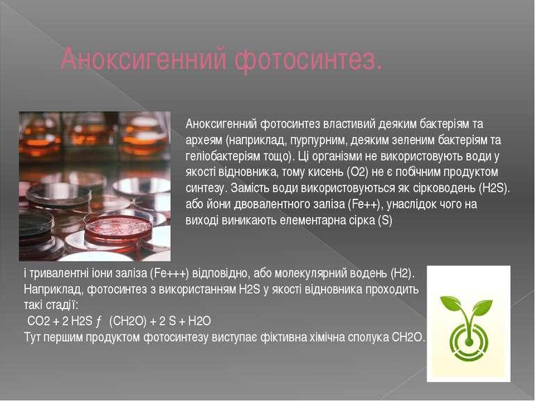 Аноксигенний фотосинтез. Аноксигенний фотосинтез властивий деяким бактеріям т...