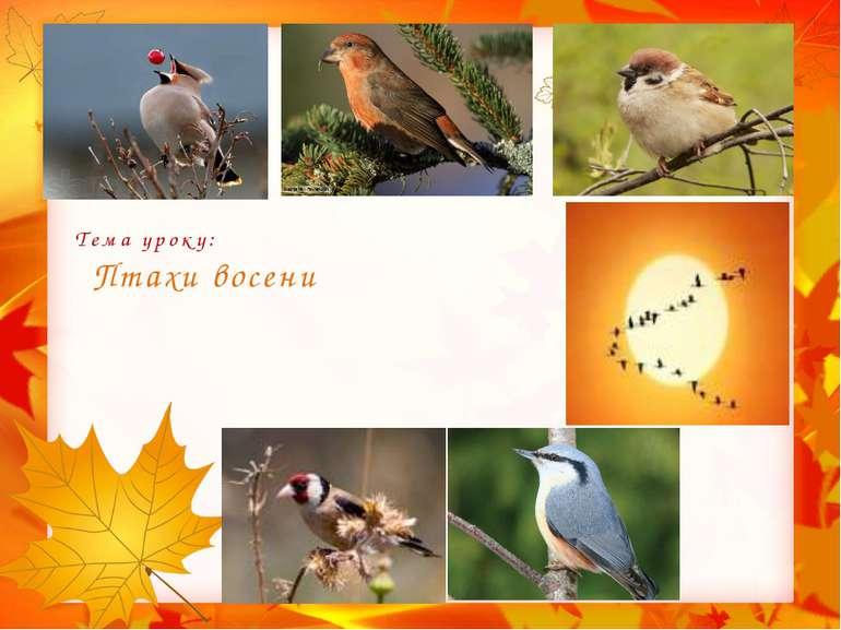 Тема уроку: Птахи восени