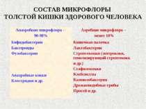 СОСТАВ МИКРОФЛОРЫ ТОЛСТОЙ КИШКИ ЗДОРОВОГО ЧЕЛОВЕКА Анаэробная микрофлора – 90...