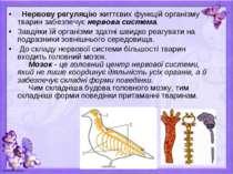 Нервову регуляцію життєвих функцій організму тварин забезпечує нервова сист...