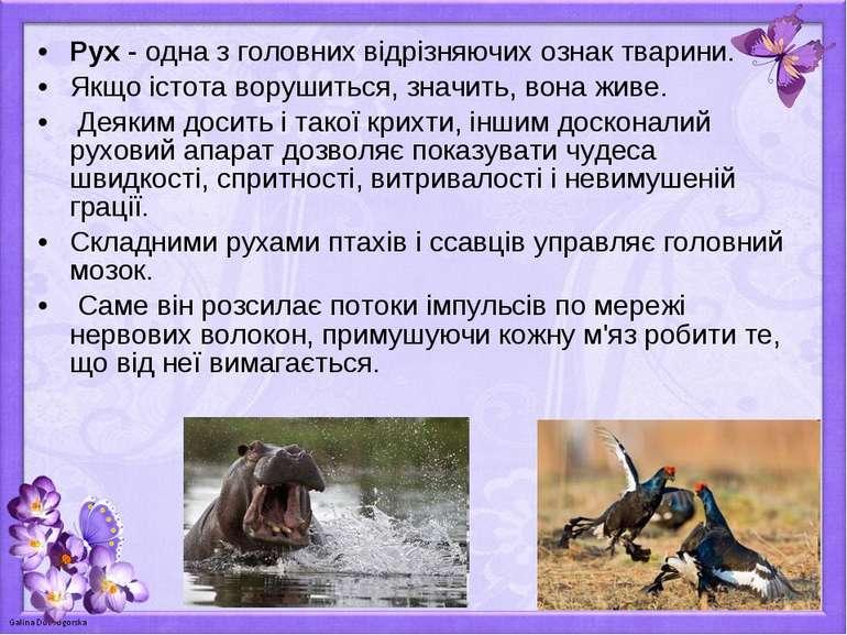 Рух - одна з головних відрізняючих ознак тварини. Якщо істота ворушиться, зна...