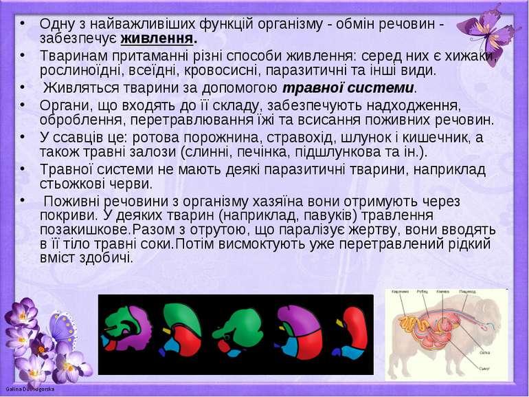 Одну з найважливіших функцій організму - обмін речовин - забезпечує живлення....