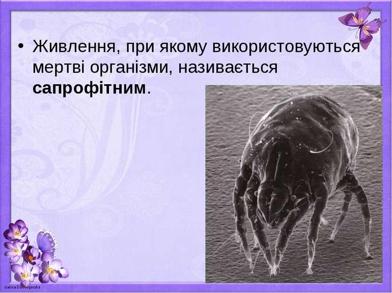 Живлення, при якому використовуються мертві організми, називається сапрофітним.