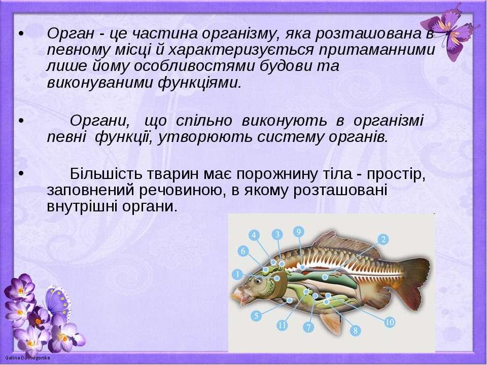 Орган - це частина організму, яка розташована в певному місці й характеризуєт...