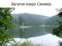 Загатне озеро Синевір