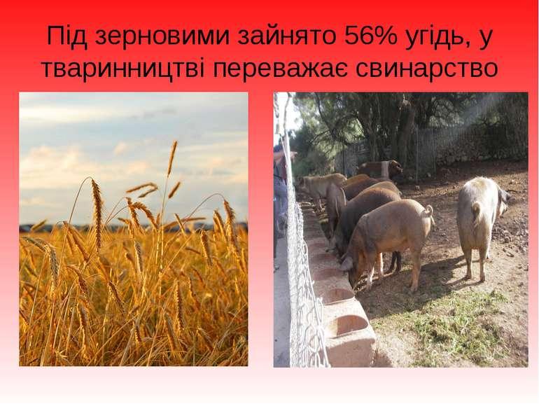 Під зерновими зайнято 56% угідь, у тваринництві переважає свинарство