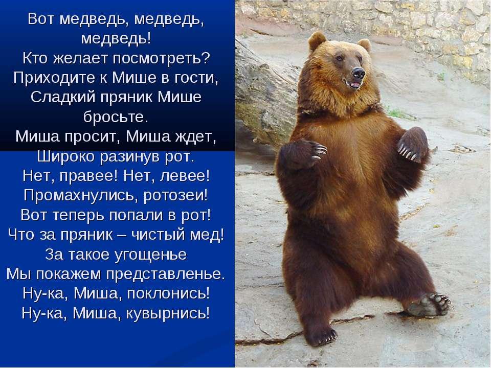 Вот медведь, медведь, медведь! Кто желает посмотреть? Приходите к Мише в гост...