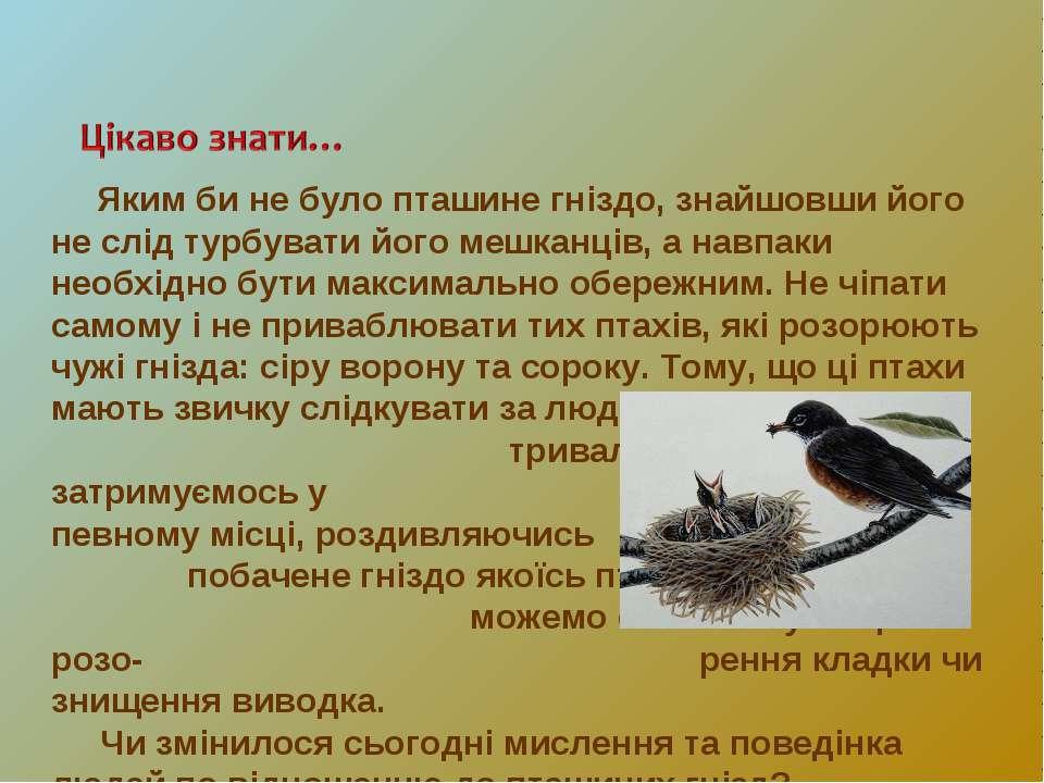 Яким би не було пташине гніздо, знайшовши його не слід турбувати його мешканц...