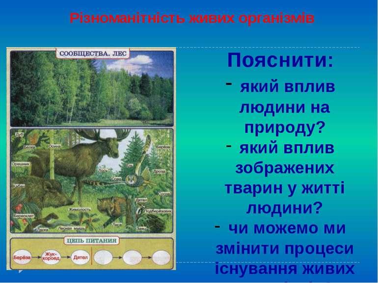 Різноманітність живих організмів Пояснити: який вплив людини на природу? який...