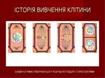ІСТОРІЯ ВИВЧЕННЯ КЛІТИНИ 3.НОВА КЛІТИНА 3.НОВА КЛІТИНА УТВОРЮЄТЬСЯ У РЕЗУЛЬТА...