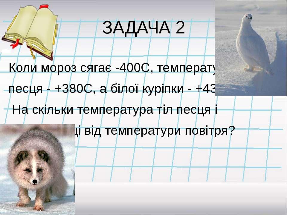 ЗАДАЧА 2 Коли мороз сягає -400С, температура песця - +380С, а білої куріпки -...