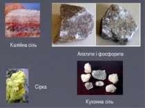 Калійна сіль Кухонна сіль Сірка Апатити і фосфорити
