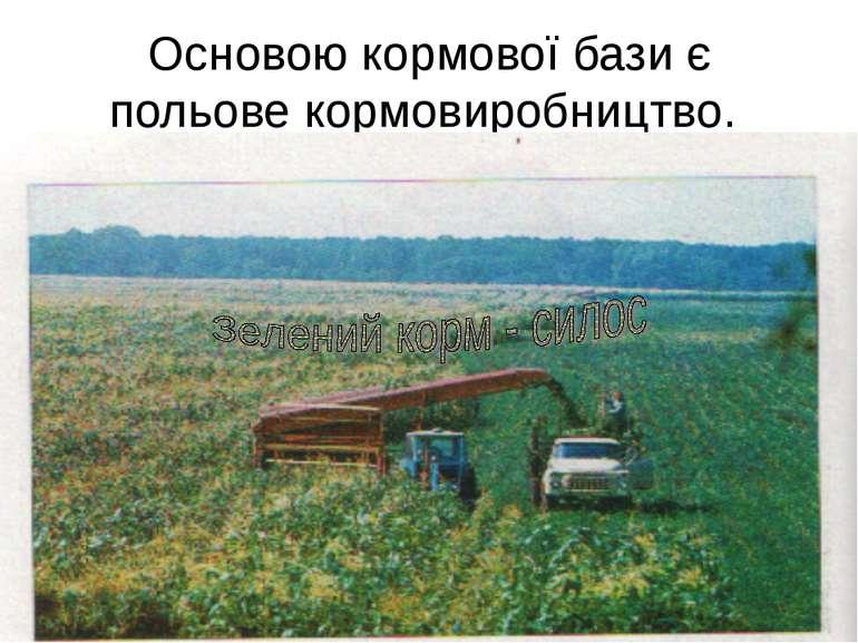 Основою кормової бази є польове кормовиробництво.