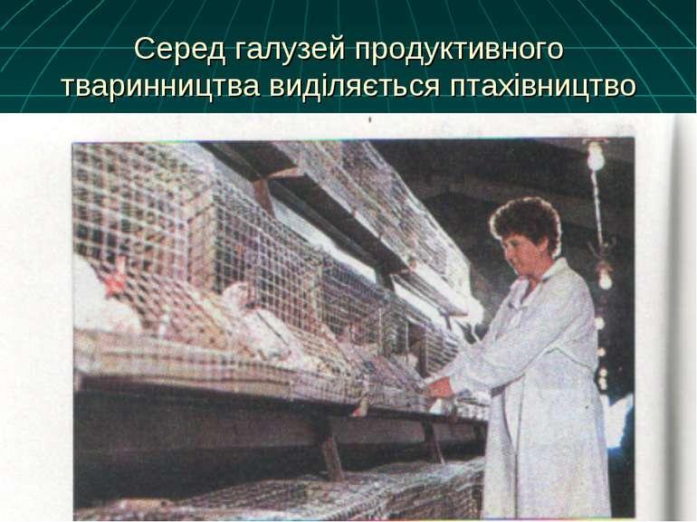 Серед галузей продуктивного тваринництва виділяється птахівництво