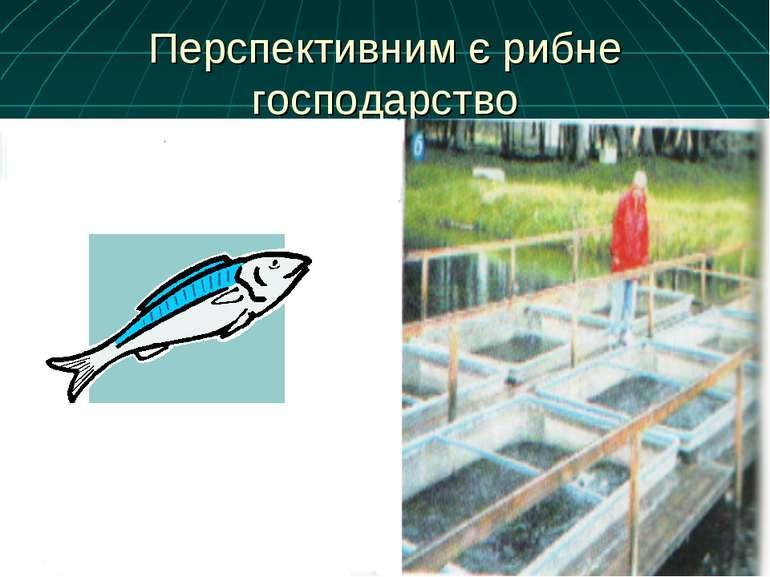 Перспективним є рибне господарство