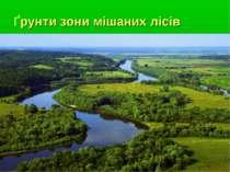 Ґрунти зони мішаних лісів