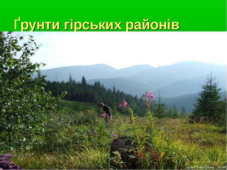 Ґрунти гірських районів