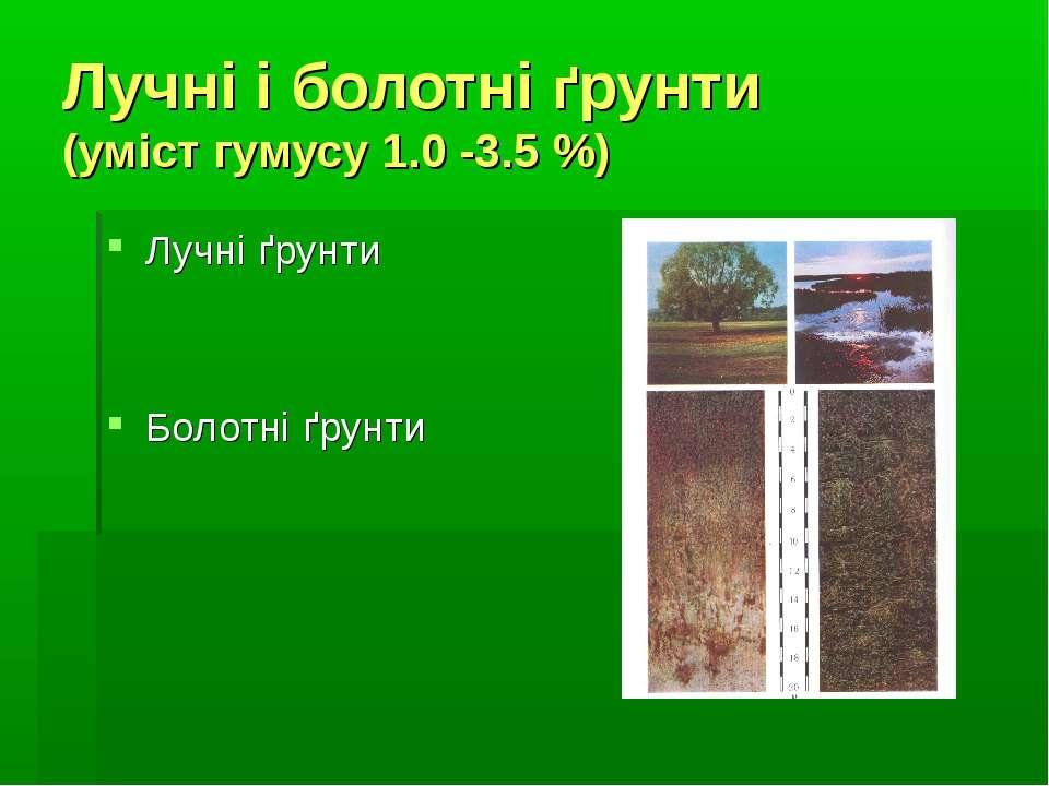 Лучні і болотні ґрунти (уміст гумусу 1.0 -3.5 %) Лучні ґрунти Болотні ґрунти