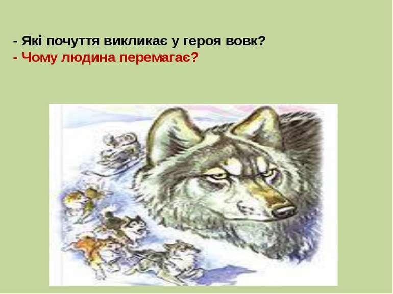 - Які почуття викликає у героя вовк? - Чому людина перемагає?