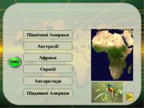 Південної Америки Африки Рослини і тварини … пристосувалися до умов життя в п...